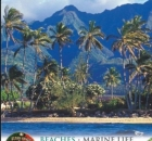 Hawaii (Eyewitness Travel Guides)