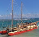 Two ocean-going canoes have returned to New Zealand after an epic voyage to Easter Island by Polynesian navigators using traditional craft